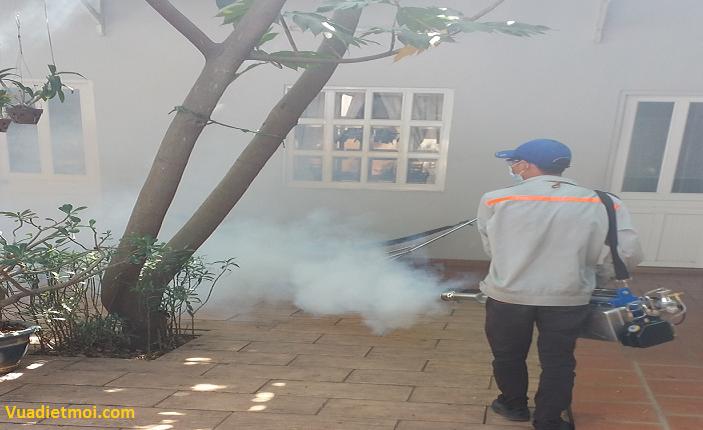 Công ty phun diệt muỗi tại Tiền Giang
